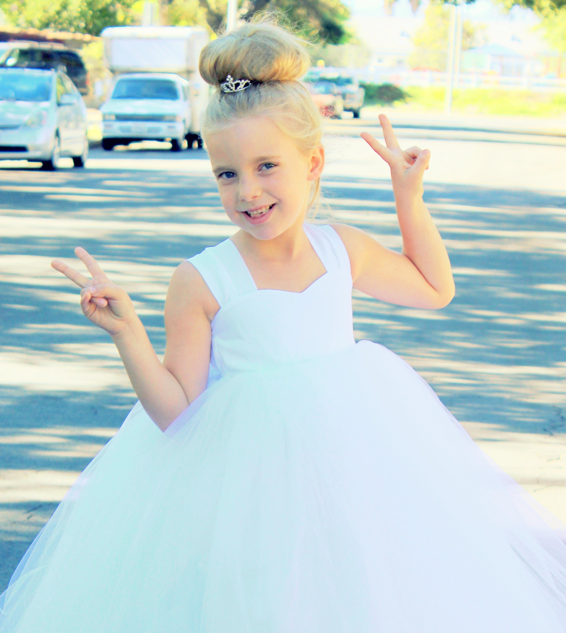 Ivory Sweetheart Neck Top Tutu Flower Girl Dress 201