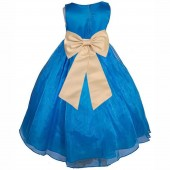 Royal Blue/Champagne Satin Bodice Organza Skirt Flower Girl Dress 841T