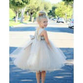 Champagne Sweetheart Neck Top Tutu Flower Girl Dress 201