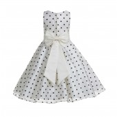 Ivory / Brown / Ivory Organza Polka Dot V-Neck Flower Girl Dress 184T